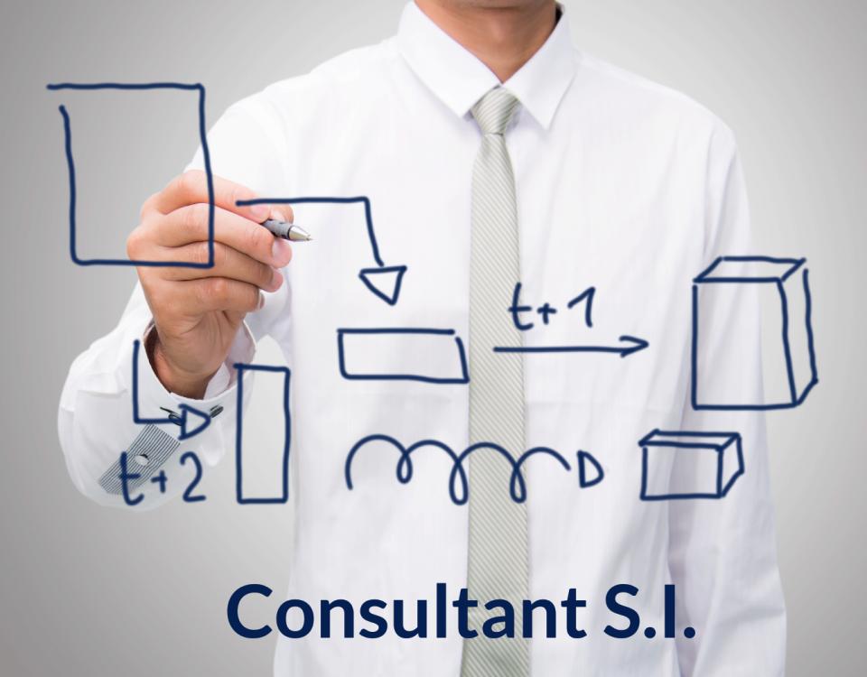 LPB Conseil - Offre Emploi Consultant SI